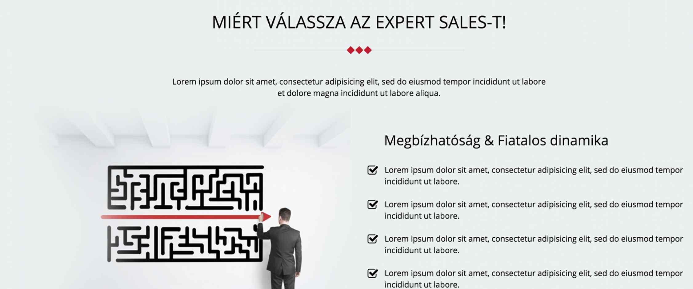 Expert Sales honlap fejlesztés